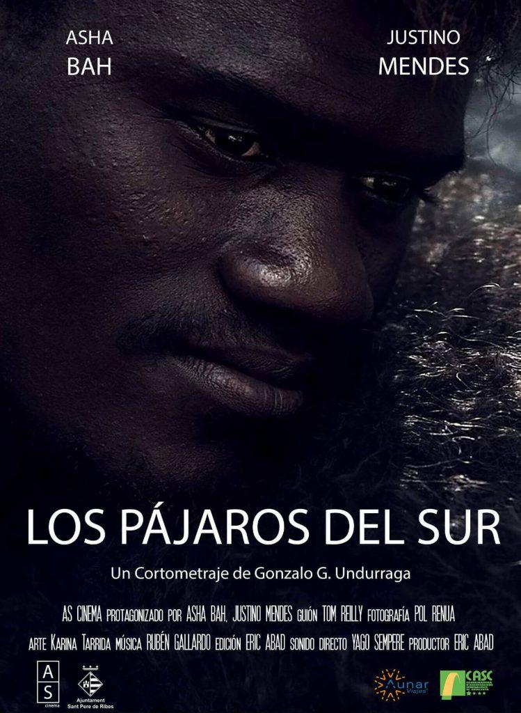 Produccion audiovisual pajaros sur 1 749x1024 - Films